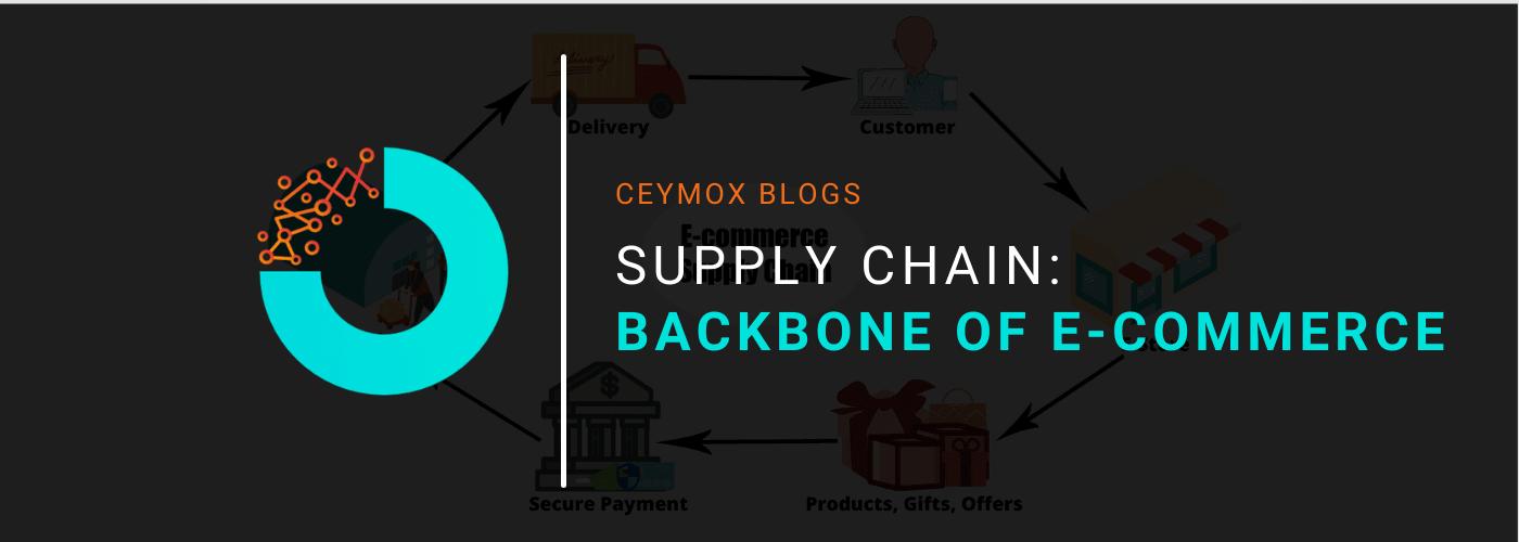 supply chain backbone of e-commerce