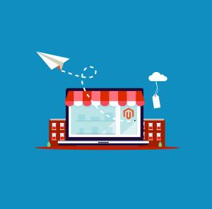 Magento Store Development & Management